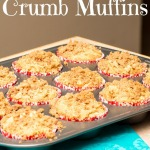 Skinnified Apple Cinnamon Crumb Muffins via Ari's Menu