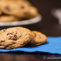 Plain Ol' Chocolate Chip Cookies {vegan}
