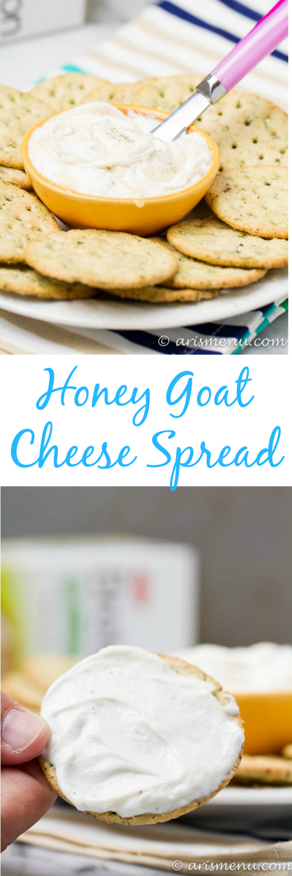 Honey Goat Cheese Spread: Smooth, creamy, sweet and tangy--the perfect spread to jazz up your crackers!